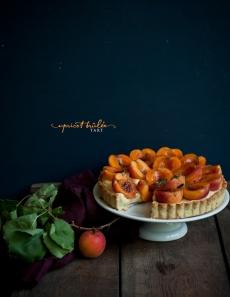 apricots-1-4